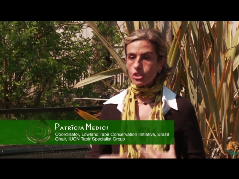 EAZA ZOOS AND CONSERVATION WITH PATRICIA MEDICI